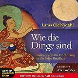 Wie die Dinge sind: Eine zeitgemäße Einführung in die Lehre Buddhas - Ole Nydahl