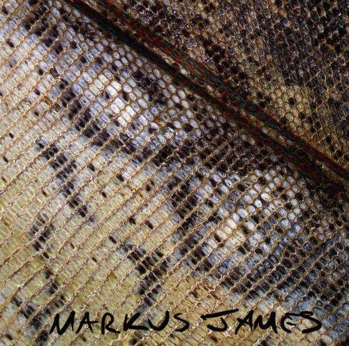 Snakeskin Violin by Markus James (2008-02-19)