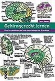 Gehirngerecht lernen