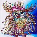 HOHOME Diamant Spezial-Geformte DIY 5D Teilweise-Kreuzstich Kits Kristall Strass der Bild Animal Serial Diamant Stickerei Arts Craft Mosaik für Home Wand-Dekoration mit Aufbewahrungsbox–Farbe Eule
