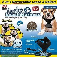[Gesponsert]Luck Leash Retractable Hundeleine & Halsband, 2 in 1 Retractable Harness & Magnetische Kragen, 360 ° Verwicklung Frei, Passen Kleine/Mittlere Hunde, Für Hunde Zwischen 10-35LBS (S/M)