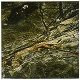 3drose CST _ 112134_ 4Regenwald Grün Marmor print-ceramic Fliesen Untersetzer, Set von 8