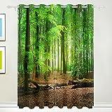 Fenster Vorhang, Luxus Tropical Wald Bäume grün print isoliert Dick Super Soft Polyester Stoff Home Decor mit Öse 2Platten für Schlafzimmer Wohnzimmer Badezimmer Küche 213,4x 139,7cm