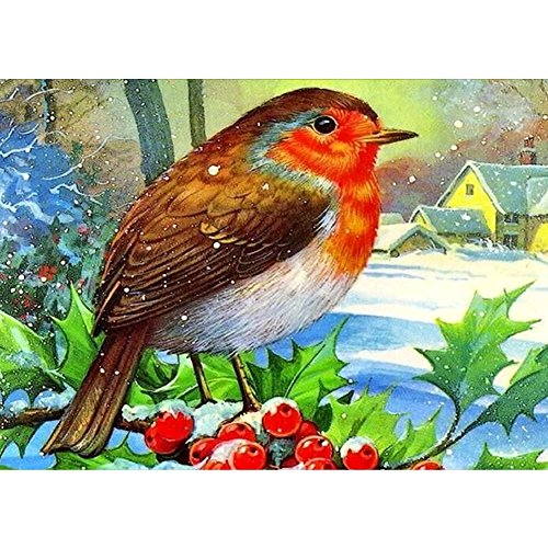 5D DIY Diamond Painting by Numbers Kits, Crystal Embroidery Cross Stitch Rhinestone Mosaic Drawing Art Craft Home Wall Decor, Bird Snow House