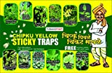 CHIPKU Insect Trap for Whiteflies,Plant Hopper (Yellow) - Pack of 25