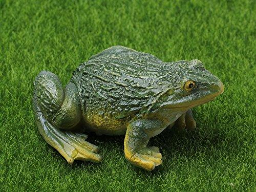 SecretRain Resin Vivid Animal Frog Fairy Garden Ornaments Home & Outdoor Decoration