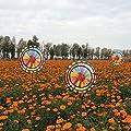 Yunso 3D Windspiel, Windmühle Wind Spinner Rainbow Dreifacher Rad Haushof Dekoration Neu von Yunso auf Du und dein Garten
