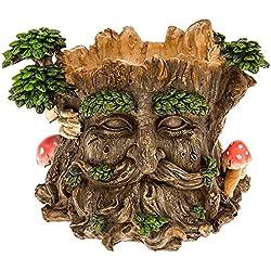 Magnifique Greenman visage Pot de fleurs décoratifs Jardin NEUF ET Emballé