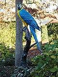 Sehr schöner großer Papagei auf einem Baumstamm sitzend aus Bronze