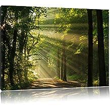 Ensoleillé chemin forestier au printemps, Format: 60x40 sur toile, XXL énormes Photos complètement encadrée avec civière, impression d'art sur murale avec cadre, moins cher que la peinture ou une peinture à l'huile, pas une affiche ou une bannière,