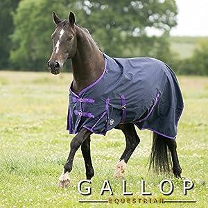 Gallop Trojan Pferdedecke, leicht,Marineblau/Violett, Navy Purple Binding, 5'3''