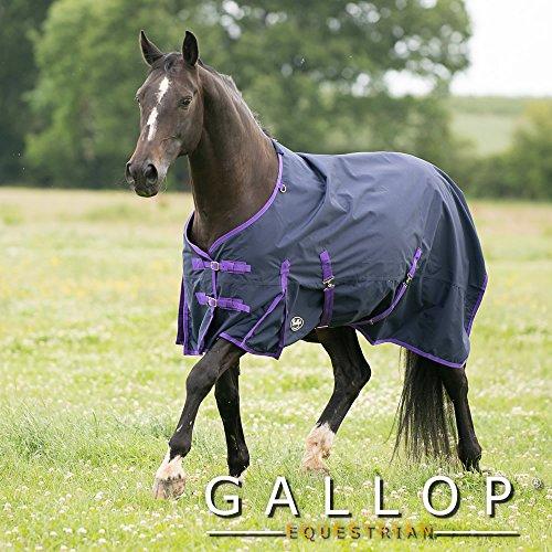 Gallop Pferde-Outdoordecke Keine Füllung 0g Kein Hals, EU 115cm - Regen Mehrfarbige Teppiche
