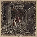 Deserted Fear: Kingdom of Worms (Re-Issue 2018) (Audio CD)