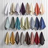 Vari lotti, 10 asciugamani da bagno di lusso, varie misure, 100% COTONE (12 lavette / asciugamani 33x 33)
