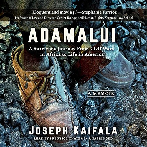 Adamalui: A Survivor's Journey from Civil Wars in Africa to Life in America