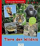 Meine große Tierbibliothek: Tiere der Wildnis