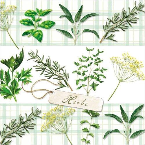 Papierservietten für Decoupage, 3-lagig, 33 x 33 cm, Kräuter, 4 einzelne Servietten für Basteln und Serviettenkunst - Tiger Kraut
