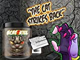 BPSpharma # CATZKILL Paranoia By Not4Pussy Most Hardcore PreWorkout Booster Trainingsbooster Bodybuilding - 245g (Sunshine Orange - Orange) -