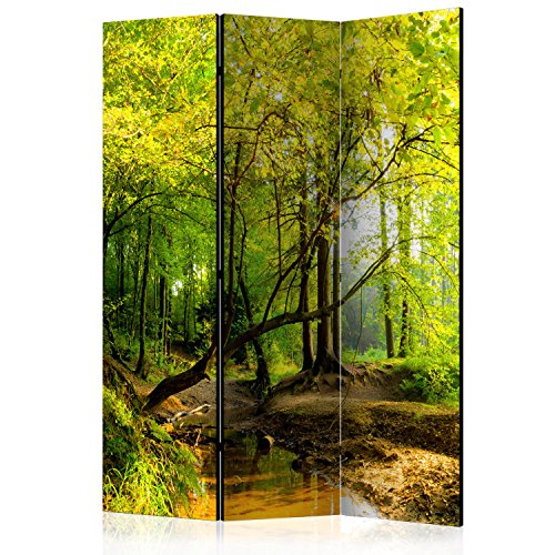 murando - Biombo con Tablero de Corcho - Paisaje Naturaleza 135x172 cm - de impresión Bilateral - Lienzo de TNT Foto Biombo Decorativo para Interiores - Wald c-B-0354-z-b