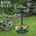 Bird Bath for Garden Outdoor Wild Bird Water Bath Feeder Traditional Yard Ornamental Plastic Pedestal Vintage Decor Hotel Wild Bird Bath Feeder with Planter Green Easy to Install, 39 × 39 × 64 cm by Greensen