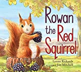 Rowan the Red Squirrel (Picture Kelpies)