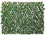 Papillon Ausziehbares Sichtschutzgitter aus PVC, Lorbeer, grün, 100cm x 200cm