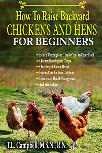 How To Easily Raise Backyard Chickens And Hens For Beginners An