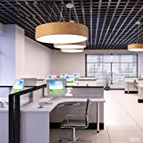 DYBLING Creative salón dormitorio sencillo comedor moderno lámparas de techo, Led circular negro de madera de 50 cm.