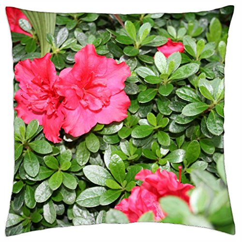 Azaleas flowers in my garden - Throw Pillow Cover Case (18
