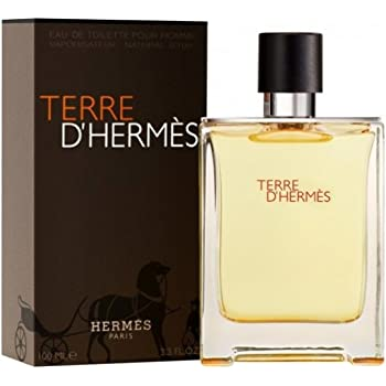 Hermes Terre D'Hermes Eau De Toilette Spray for Men - 100 ml