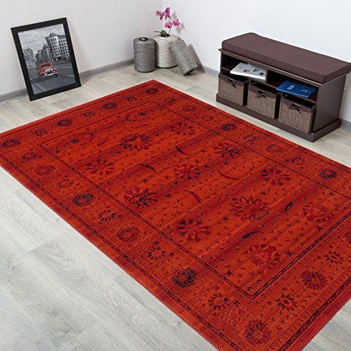 WOLLTEPPICH bester Qualität - Teppich aus Wolle ins Wohnizimmer mit Bordüre - Muster Ornamente Terrakotta Blau - THEATRE COLLECTION 200 x 300 cm Home-theatre-teppich