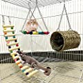 LAMEIDA Set of 3 Hamster Toys Wooden Chew Toys Hamster Warm House Lovely Rainbow Swing Ladder Pet Playing Toys from LAMEIDA