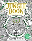 The Jungle Book Colouring Book (Macmillan Classic Colouring Books)