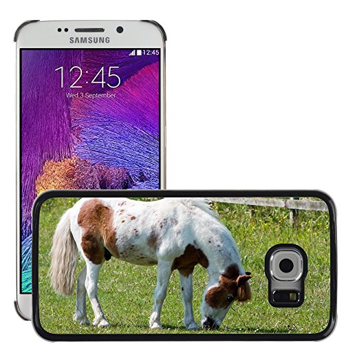Just cover Hot Style Cell Phone PC hard case cover//M00140281 cavallo pony pascolo abbastanza equine//Samsung Galaxy S6 Edge (not Fits S6)