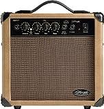 Akustik Gitarren Verstärker 10 Watt