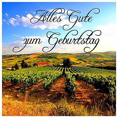 DAS-Rotwein-Geschenk-Kennenlern-Paket-Sortiment-6-Flaschen-Super-Rotweine-Spanien-und-Frankreich-Das-6er-Wein-Geschenkset-fr-Geburtrtage-oder-als-Dankeschn-inklusive-Geschenknachricht-Rioja-Syrah-Cabe