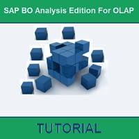 SAP BO Analysis Edition For OLAP Tutorial