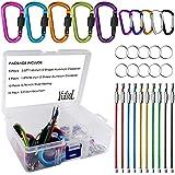 YuCool 10Pack aluminum D-Ring moschettoni, D a forma di portachiavi portachiavi clip gancio a molla per campeggio, escursionismo, pesca, con portachiavi, 10fili in acciaio 10-multicolore