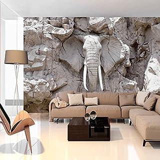 murando - Fototapete 400x280 cm - Vlies Tapete - Moderne Wanddeko - Design Tapete - Wandtapete - Wand Dekoration - Tiere Elefant Steine Stein Afrika Reise Textur g-B-0007-a-d