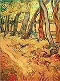Posterlounge Forex-Platte 100 x 130 cm: Weg im Garten der Heilanstalt von Vincent Van Gogh/akg-Images