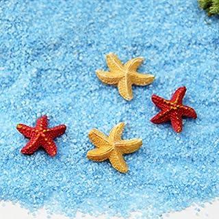 Attractive Beauty 10 x Mini-Seesterne, natürlich, zum Basteln, Dekoration für Mikro-Landschaft