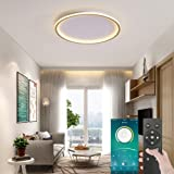 Golden Smart Ceiling Light, Dimmable Low Profile Ambient Light Fixture with BT Wireless Smart Flush Mount Lamp, Home APP Remo