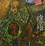 Camouflage by Merzbow (2011-08-16)
