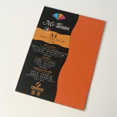Canson Mi-Teintes 160 GSM A4 Pack of 5 Honeycomb & Fine Grain Sheets - Orange