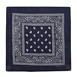 Kurtzy 12 Piece Paisley Blue Western Style Headband Bandanna Set by Bulk Scarf Set for Women, Men and Children -Bandannas for Neckerchief, Bags, Dogs and Fashion Accessories-100% Cotton - Large Pack by Kurtzy