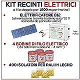 Kit für Weidezaun 1000 Meter - Solaranlage für Weidezaungerät + Weidezaun Litze + Isolatoren für Holzpfähle / eisenpfähle GEMI