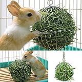 Ofanyia Sphere Treat dispenser di fieno appendente giocatore di alimentazione della sfera per il coniglio Chinchilla Guinea Pig Small Animals