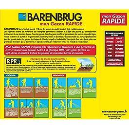 Barenbrug Gazon Rapide