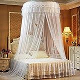 AOKDOOR Bett Moskitonetz Lace Bett Net Moskito Solid Dome Moskitonetz Preise für Schlafzimmer Sommer Vorhang Bettwäsche Decor (Weiß)