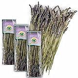 Original Italienischer Bio Lavendel an Zweigen aus Sizilien Lavendelzweige getrocknet 3x 25G (ideal auch für Präsentkörbe)
